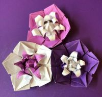 Origami Five petalled Flowers