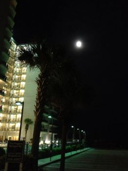 Shelly's Myrtle Beach Moon