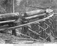 Logging train 1935