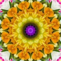 kaleidoscope 336 in yellow small