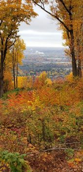Fall from Rib Mountain, Wisconsin