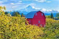 Beautiful Red Barn Scene