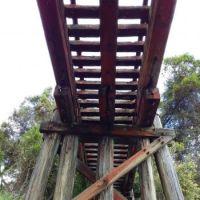 Dorrigo to Glenreagh Railbridge