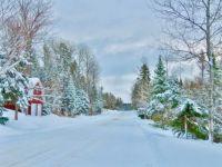 Fresh Snow, Aroostook, ME