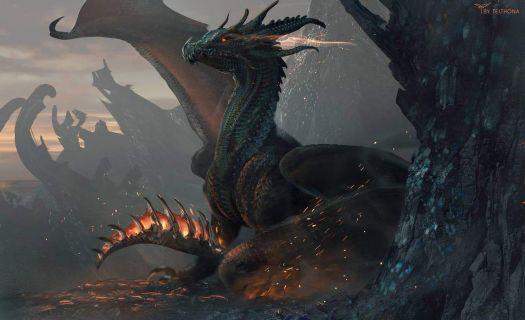 Fire Tail Dragon