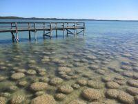 Thrombolites, Western Australia
