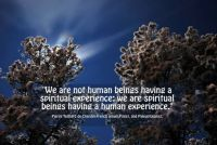 We are not human beings having a spiritual experience, we are spiritual beings