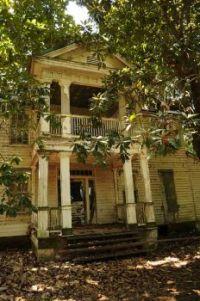 Abandoned - Roebuck Plantation
