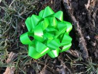 Green bow (many more pieces)
