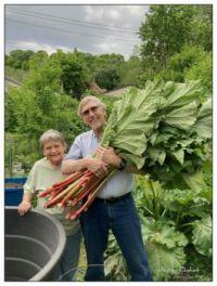 Happy Rhubarb
