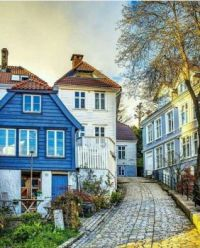 Colors Of Bergen Norway