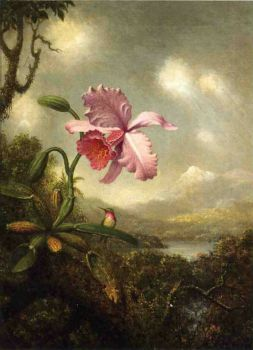 Hummingbird and Orchid by Martin Johnson Heade
