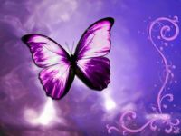 I love butterflies - 2