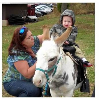 PJ the mini donkey.... kids can ride him!!!