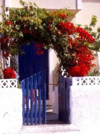 Purple Door and Gate
