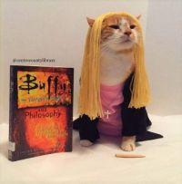Cat Icon Game #55 - please identify