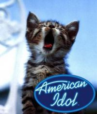 The next American Idol!