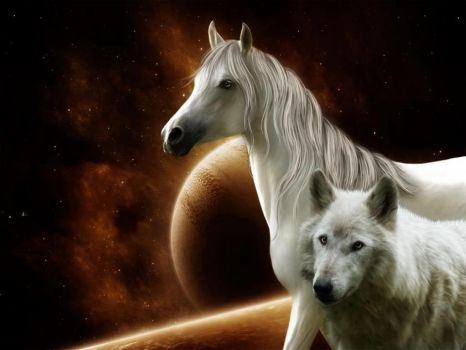 horse and wolf