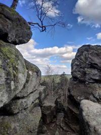 ₒoO🌲 In the rocks 🌲Ooₒ