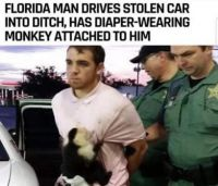 The return of Florida Man.