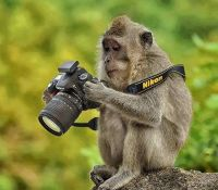 (WI-4)  ~  'Take a Picture not a Trophy...'  ;-)