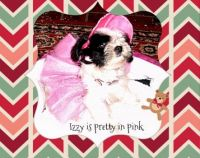Izzy in Pink