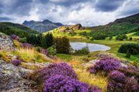 United Kingdom, Cumbria