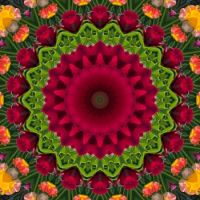 kaleidoscope 355 pink and green small