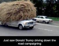"""Go Donald..!!'.."