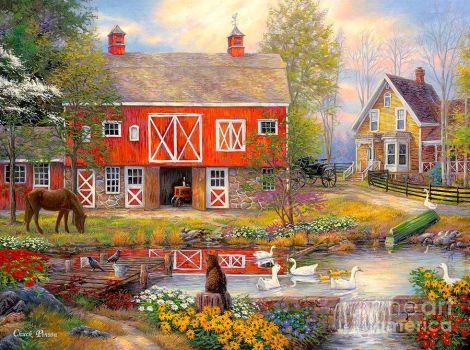 Reflection of Country Living