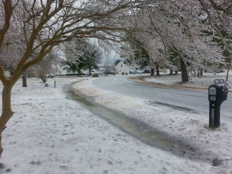 Never Snows In North Carolina