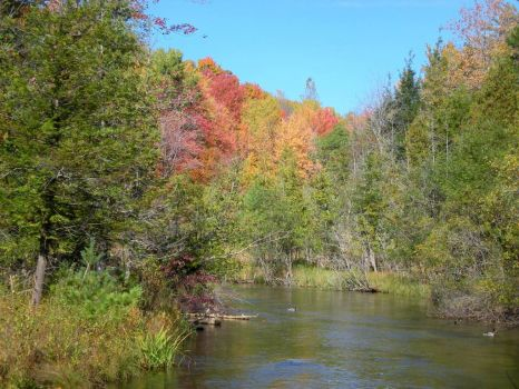Fall on the Platte River