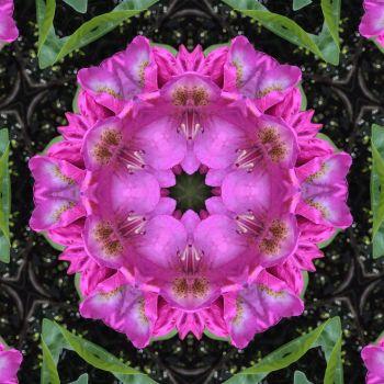 kaleidoscope 69 more pink very large