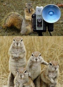 Say Cheese ot maybe nuts!!