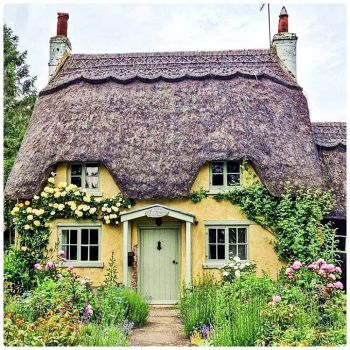Thatched Roof Cottage with Wild Garden