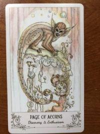 Tarot ~~ 24 October