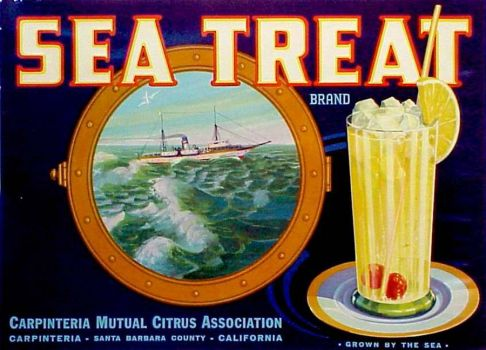 Sea Treat
