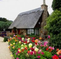 Cottage met bloemen