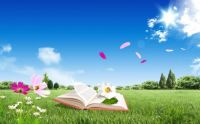 Meadow reading