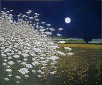Phil Greenwood 'MoonLights'