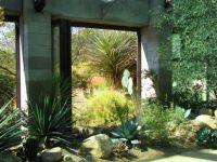 Albuquerque Botanical Gardens-c