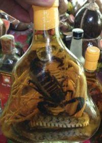 Snake Cocktail.