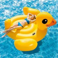 multi-intex-pool-floats-56286ep-64_1000