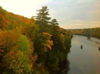 Autumn from the other side of the bridge