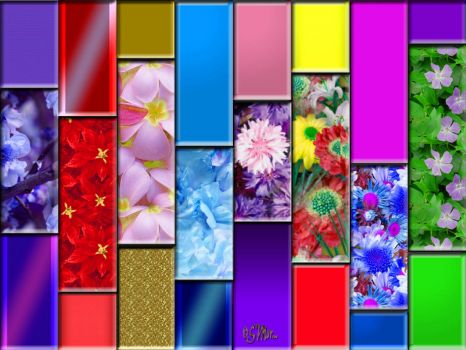 WEEKLY THEME:  Squares & Rectangles - Patterned Rectangles.... (S)....