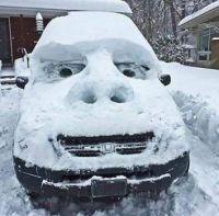 Cute Snow Car