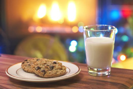 Christmas milk and cookies for Santa