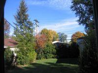 Backyard, Livonia MI