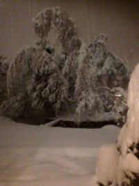The 12 inches of snow out my front door.