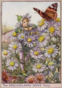 The Michaelmas Daisy Fairy (smaller size)